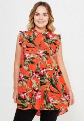 Купить Блуза Dorothy Perkins Curve красный DO029EWTQQ38