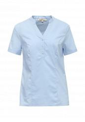 Купить Блуза Modis голубой MO044EWRFW89