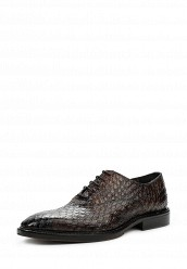 Купить Туфли Uominitaliani коричневый UO002AMNYL36 Италия