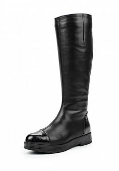 Сапоги, Francesco Donni, цвет: черный. Артикул: FR034AWLHN66. Женская обувь / Сапоги