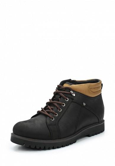 Купить Ботинки Rosconi черный RO036AMVIY76 Россия