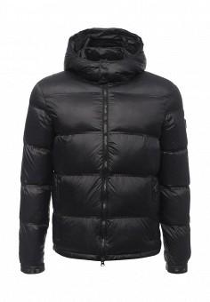 Пуховик, EA7, цвет: черный. Артикул: EA002EMUEE52. Мужская одежда / Верхняя одежда / Пуховики и зимние куртки