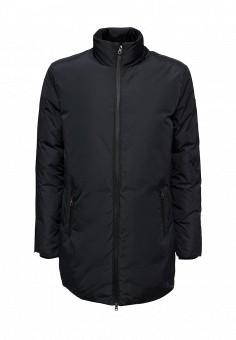 Пуховик, EA7, цвет: синий. Артикул: EA002EMUEE78. Мужская одежда / Верхняя одежда / Пуховики и зимние куртки