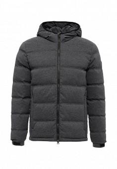 Пуховик, EA7, цвет: серый. Артикул: EA002EMUEE79. Мужская одежда / Верхняя одежда / Пуховики и зимние куртки