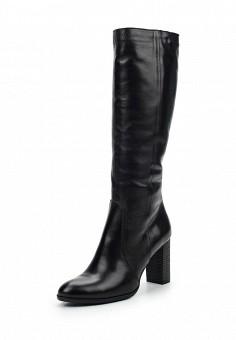 Сапоги, Simen, цвет: черный. Артикул: ER946AWUZN51. Женская обувь / Сапоги / Сапоги