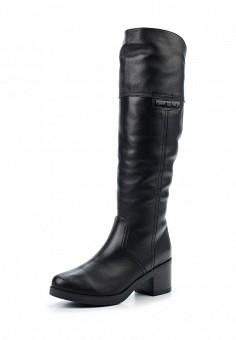 Сапоги, Francesco Donni, цвет: черный. Артикул: FR034AWWTF89. Женская обувь / Сапоги