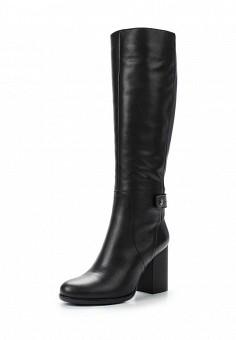 Сапоги, Giotto, цвет: черный. Артикул: GI514AWYOD26. Женская обувь / Сапоги