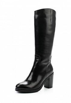 Сапоги, Palazzo D'oro, цвет: черный. Артикул: PA001AWWNG76. Женская обувь / Сапоги
