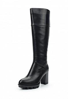 Сапоги, Palazzo D'oro, цвет: черный. Артикул: PA001AWWNG77. Женская обувь / Сапоги