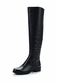 Ботфорты, Tervolina, цвет: черный. Артикул: TE007AWXEC47. Женская обувь / Сапоги