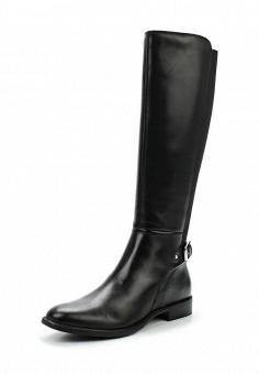 Сапоги, Tervolina, цвет: черный. Артикул: TE007AWXEC93. Женская обувь / Сапоги / Сапоги