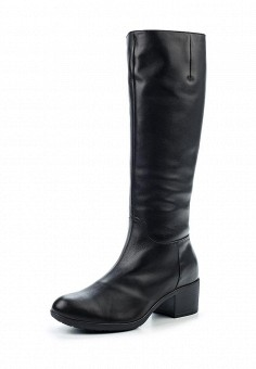 Сапоги, Tervolina, цвет: черный. Артикул: TE007AWYXJ26. Женская обувь / Сапоги